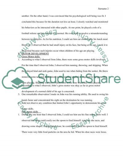 Preschool Observation Project essay example