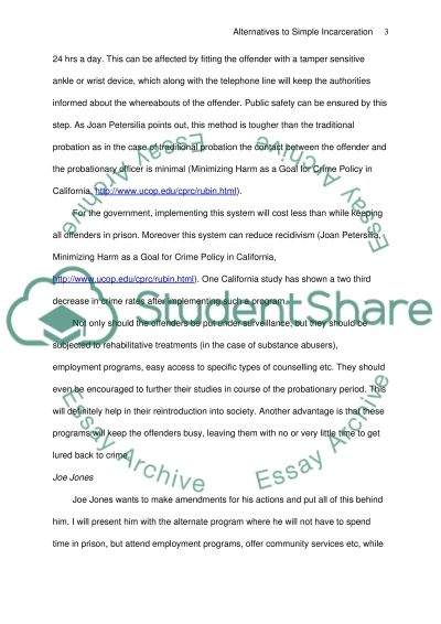 Alternatives to Simple Incarceration essay example