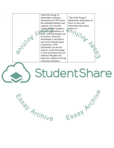 Memory Stores handout essay example