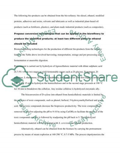 Biorefinery essay example