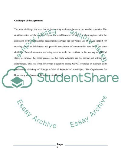 Globalization essay example