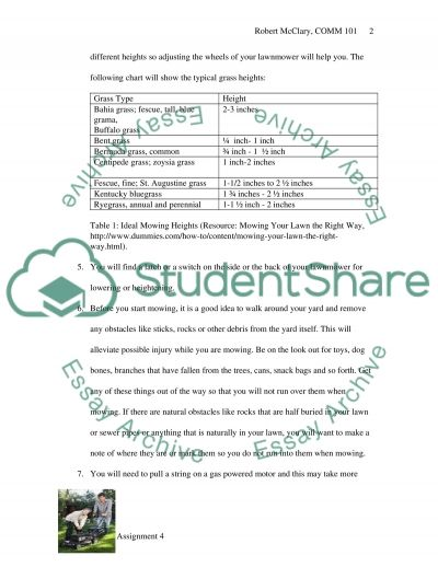 Process Document essay example