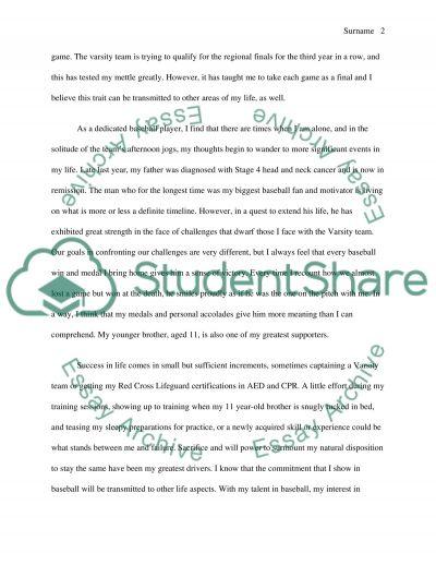 College Essay essay example
