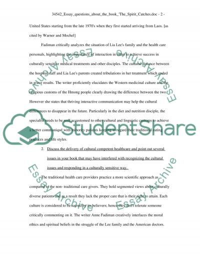 The Spirit Catches You and You Fall Down essay example