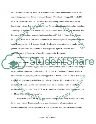 Roman State essay example