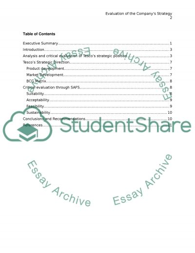 Evaluation of the Companys Strategy essay example