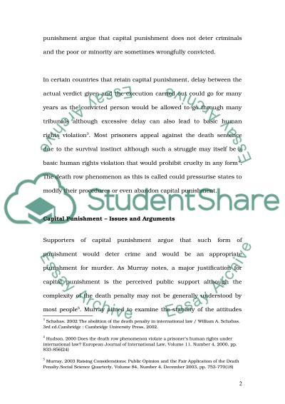 Capital Punishment Essay essay example