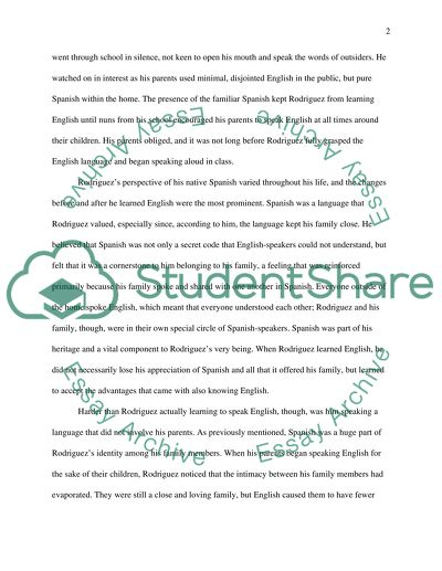 language and identity essay example  topics and well written essays  language and identity