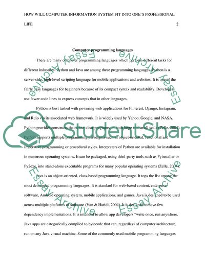 management information system essay