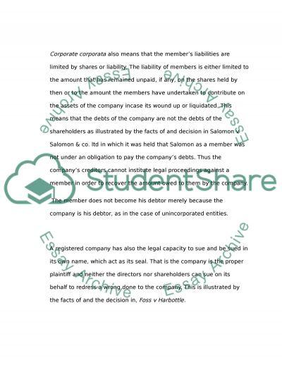 company legal entity essay