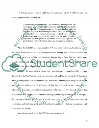 Human Rights and democratic society essay example
