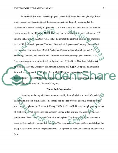 Identify an organisation essay example