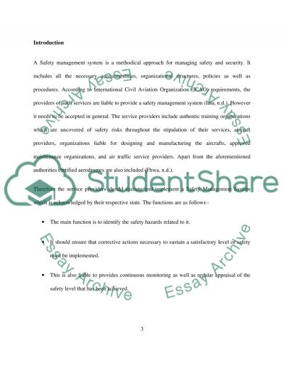 Safety Management Plan Implementation essay example