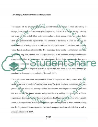 Employability essay example