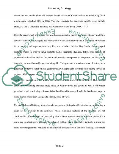 Marketing Strategy essay example