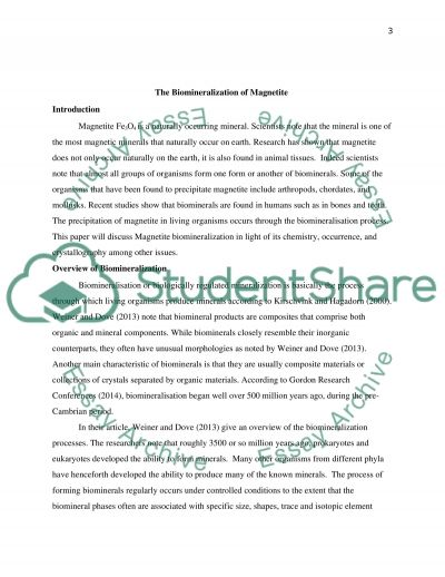 Magnetite Biomineralization essay example