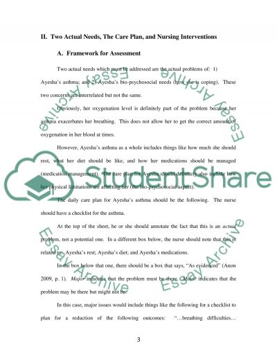 Assessment Plan essay example