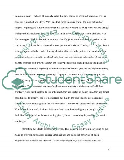 Stereotype Paper Assignment Essay example