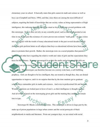 Stereotype Prejudices essay example