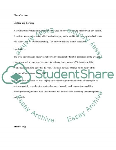Wildlife and Landscape Survey essay example