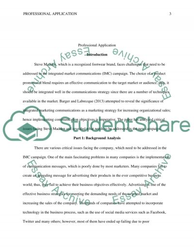 Professional Application essay example