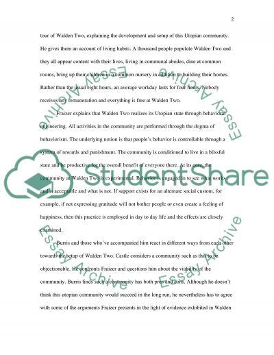 Perfect Society essay example