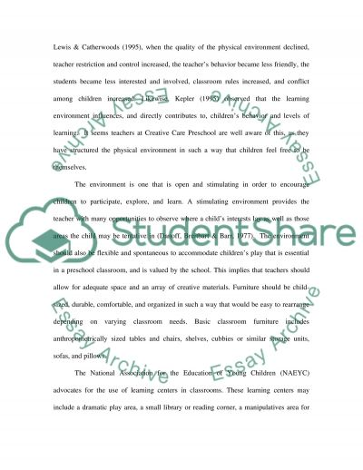 Classroom Environment essay example