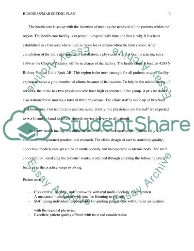 Business/Marketing Plan essay example