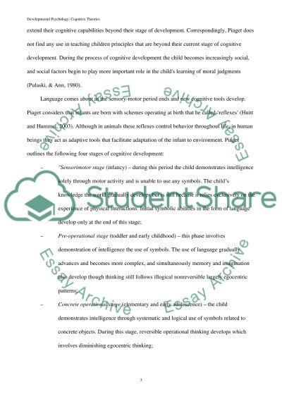 Developmental Psychology Book Report/Review essay example