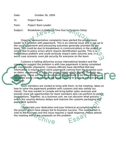 Team Meeting Regarding Delivery Problems essay example