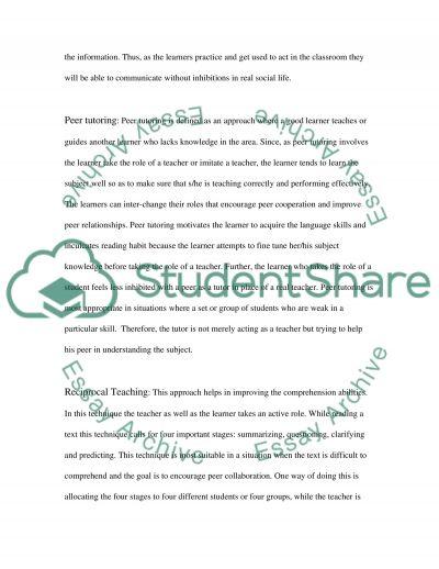 Peer Assisted Strategies essay example