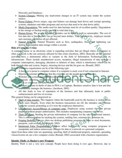 Information and Systems Security essay example