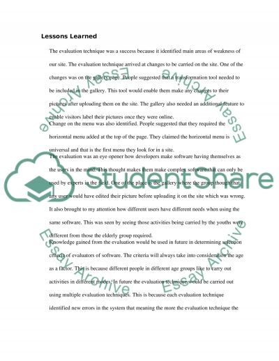 User Centred Design for Web essay example