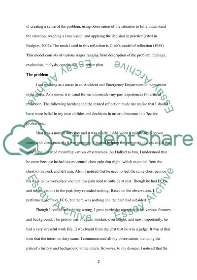 Reflective Practice - Practitioner Incident essay example