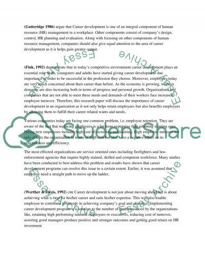 The Important Career Development on organization essay example