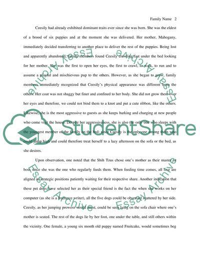 Introduction of motivation essay