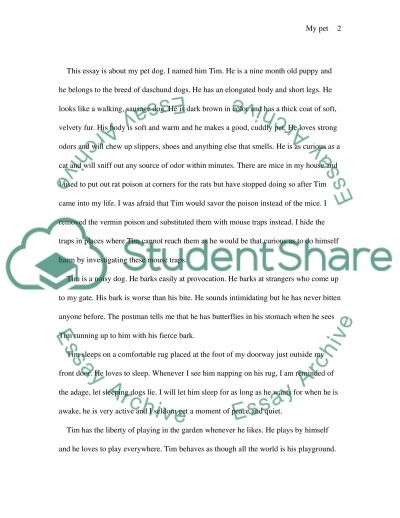 Descriptive writing essay example