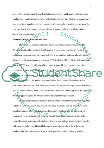 Term Paper Essays Natural Resources And Energy On The Forest Reflective Essay Thesis also Paper Essay Writing Natural Resources And Energy On The Forest Essay Process Essay Example Paper