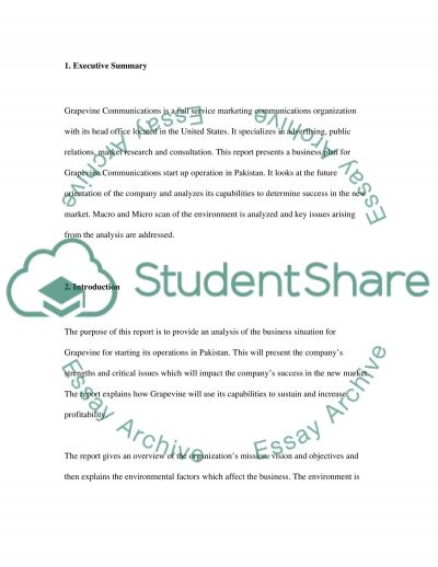 The Global Future essay example