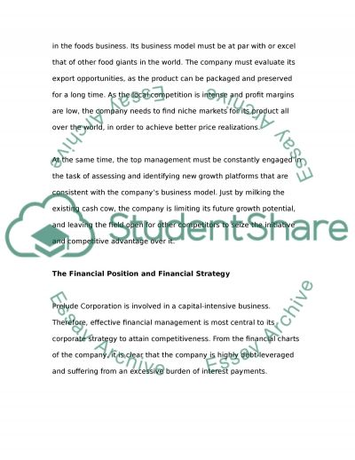 Leadership and Management of the Company essay example