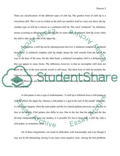 Motif essays