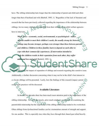 Siblings Groups essay example