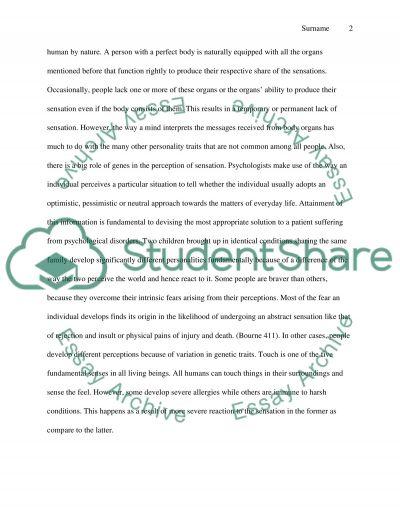 Sensation and perception essay example