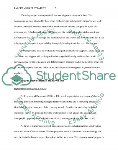 Target Market Strategy Essay example