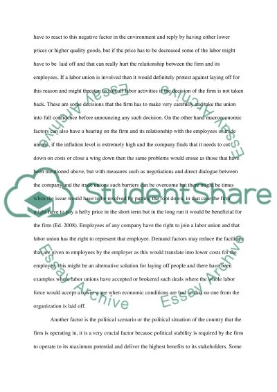 Employment Relations 2 essay example
