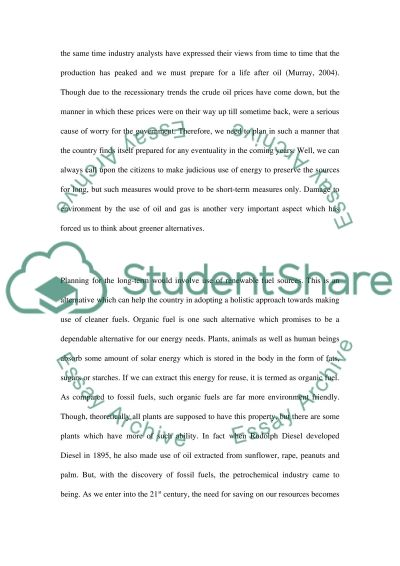 Fuel and energy essay example