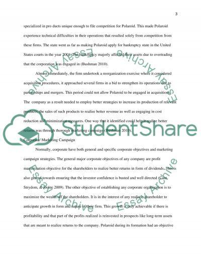 Polaroid Advertising Campaign essay example