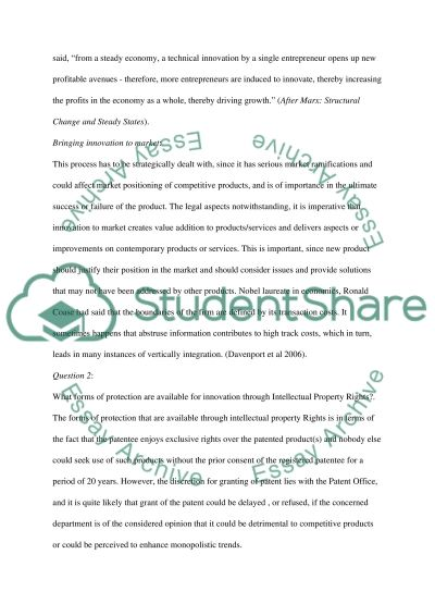 Intellectual Property Rights essay example
