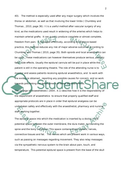 Nursing the Patient in Pain essay example