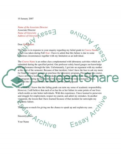 Letter and failure Essay example